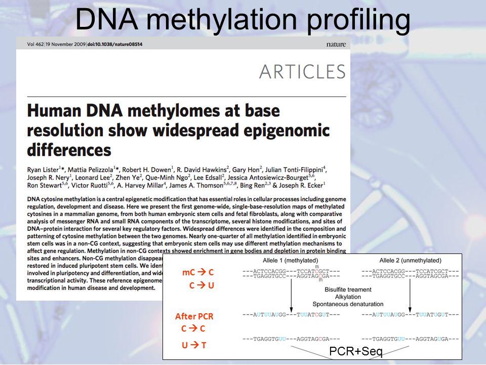DNA methylation profiling mC  C C  U C  C U  T After PCR PCR+Seq
