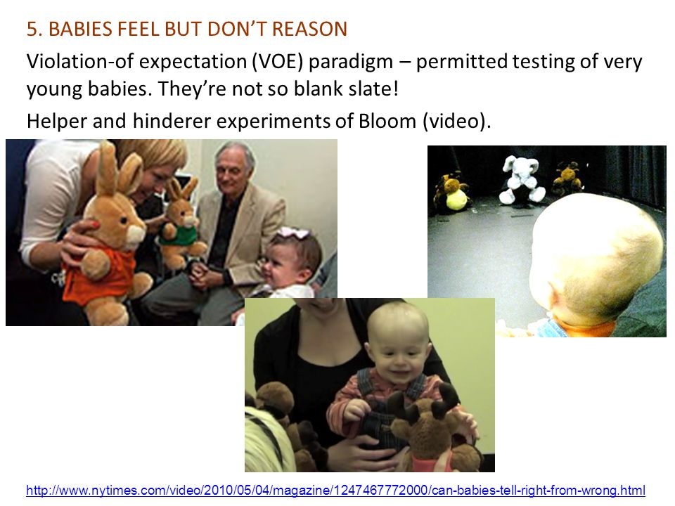http://www.nytimes.com/video/2010/05/04/magazine/1247467772000/can-babies-tell-right-from-wrong.html 5.