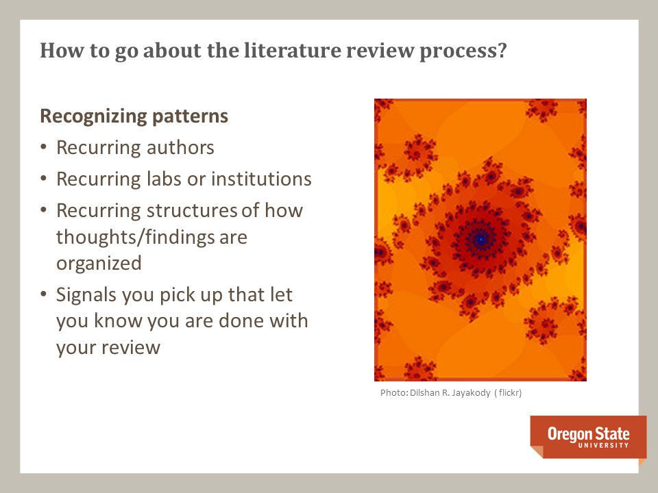 Recognizing patterns Recurring authors Recurring labs or institutions Recurring structures of how thoughts/findings are organized Signals you pick up that let you know you are done with your review How to go about the literature review process.