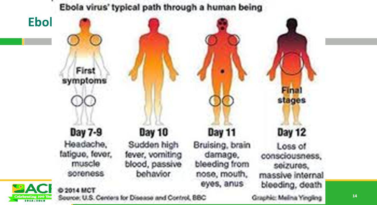 14 Ebola