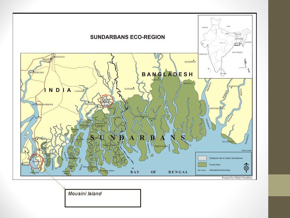 M Mousini Island