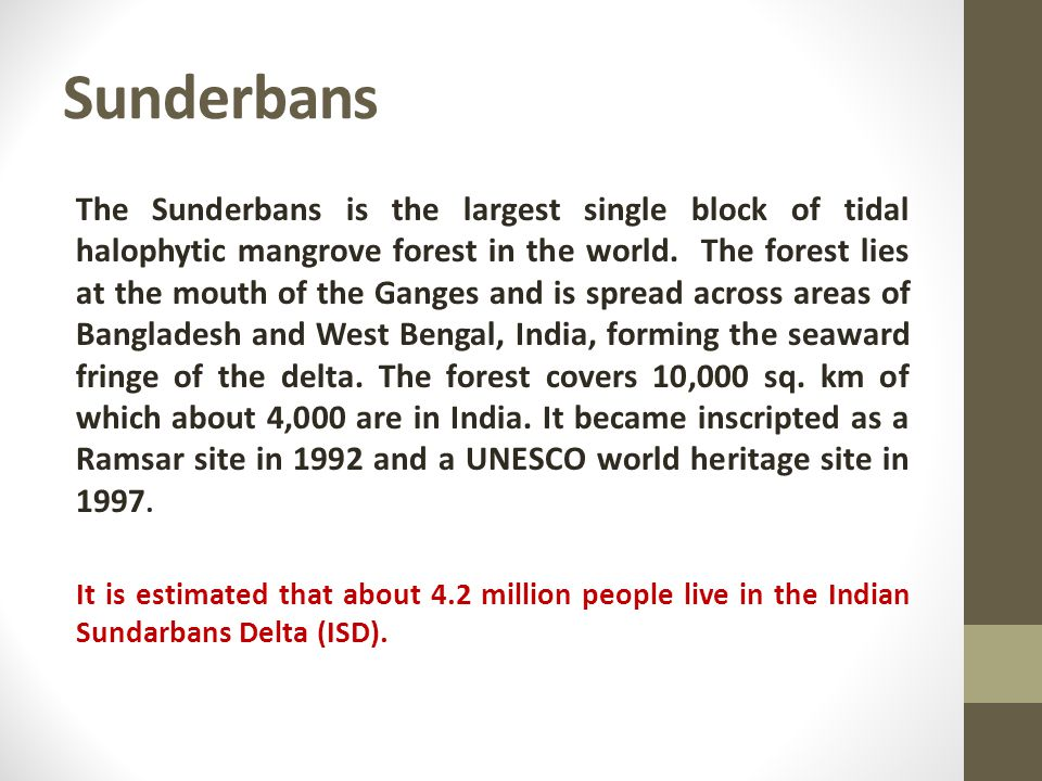 Sunderbans The Sunderbans is the largest single block of tidal halophytic mangrove forest in the world.