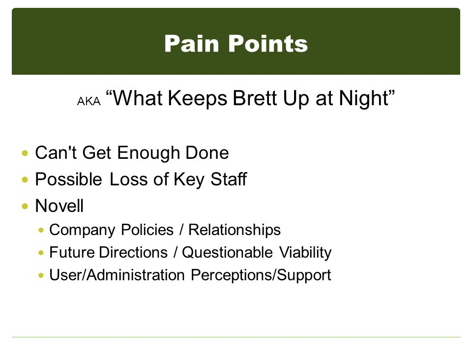 Pain Points AKA What Keeps Brett Up at Night Can t Get Enough Done Possible Loss of Key Staff Novell Company Policies / Relationships Future Directions / Questionable Viability User/Administration Perceptions/Support