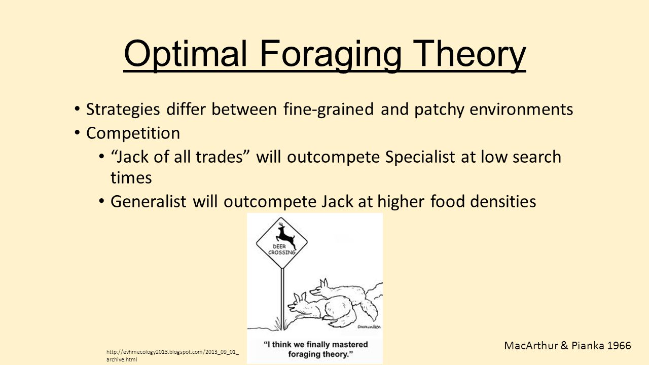 """Optimal Foraging Theory Strategies differ between fine-grained and patchy environments Competition """"Jack of all trades"""" will outcompete Specialist at"""
