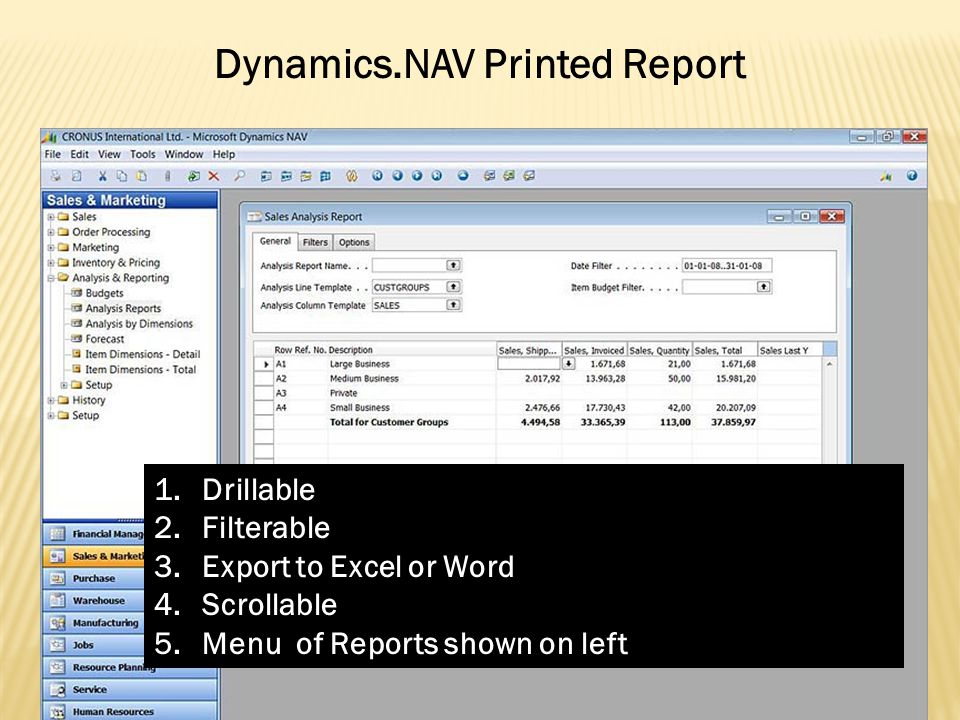 Dynamics.NAV Printed Report 1.Drillable 2.Filterable 3.Export to Excel or Word 4.Scrollable 5.Menu of Reports shown on left