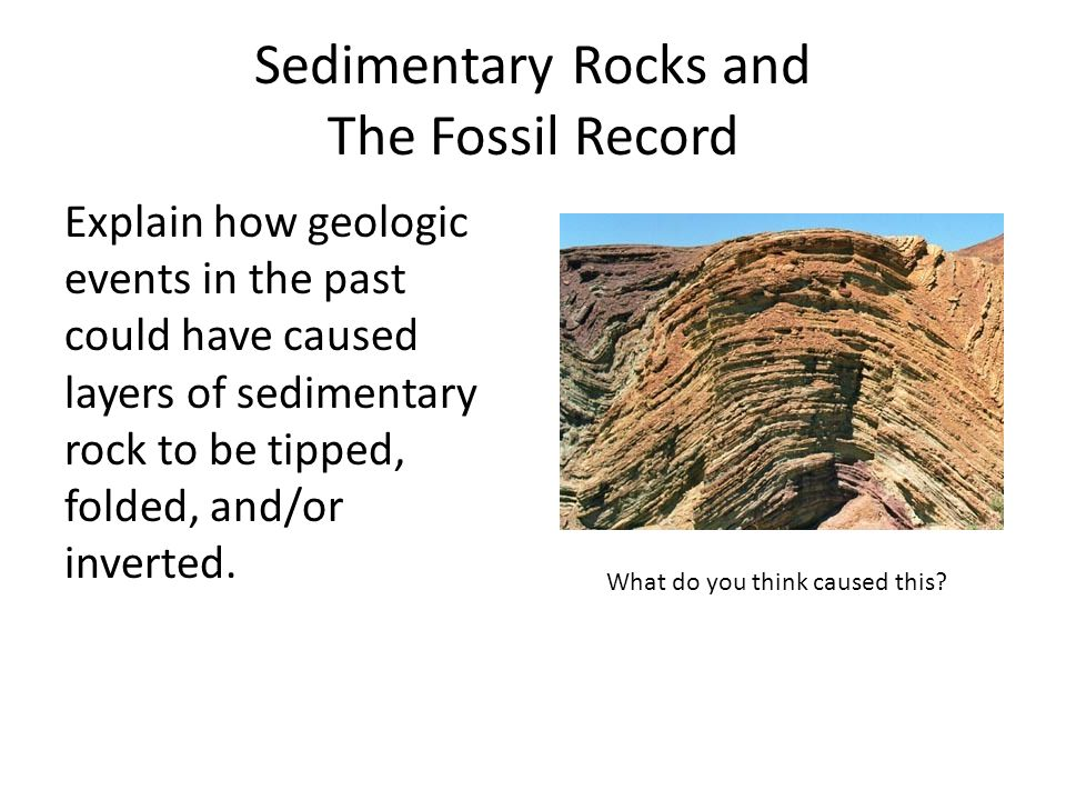 Sedimentary Rocks and The Fossil Record Explain how geologic events in the past could have caused layers of sedimentary rock to be tipped, folded, and/or inverted.