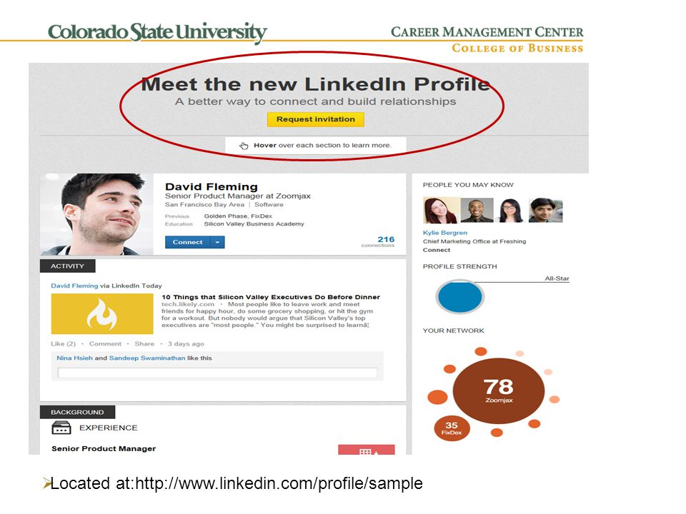 Profile Components  Headline  Updaters:  What are you doing now  What kind of co/position are you looking for  What research papers/whitepapers have you published  Summary, Experience, Skills, and Education – Who you are  Additional Information and Contact Settings  Blogs, Presentations, or Career Portfolio Content