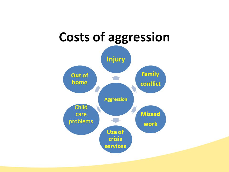 Costs of aggression Aggression Injury Family conflict Missed work Use of crisis services Child care problems Out of home