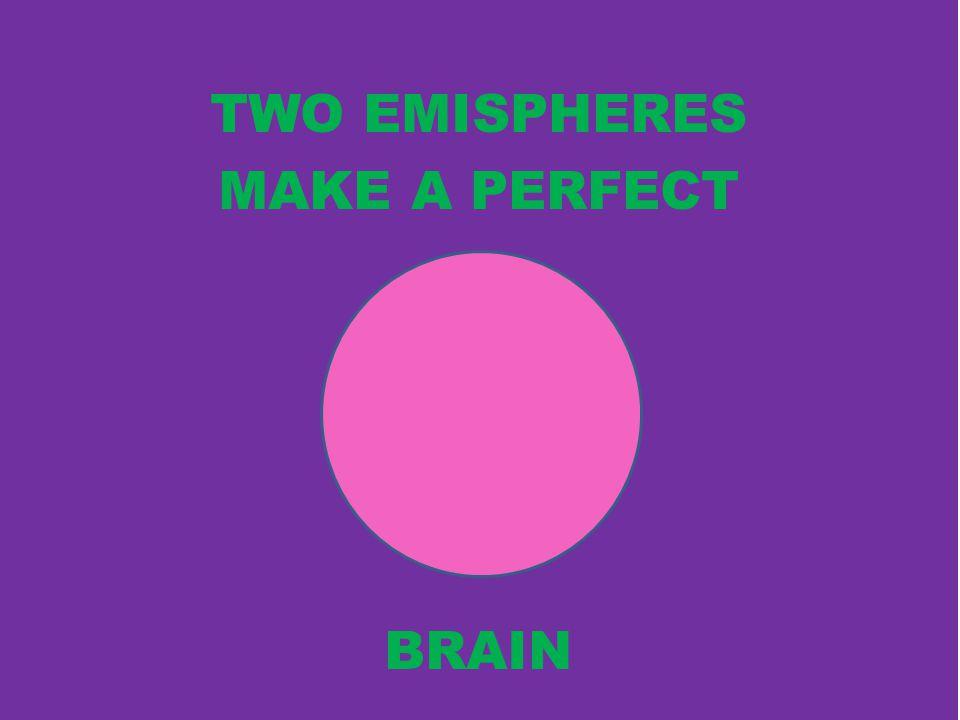 TWO EMISPHERES MAKE A PERFECT BRAIN