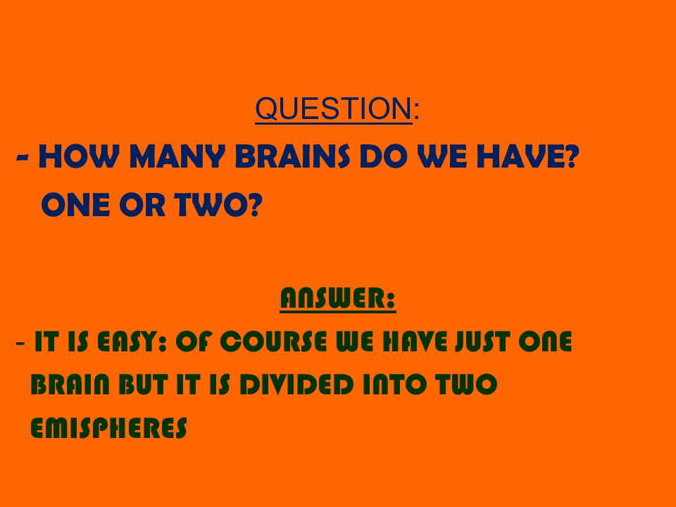 QUESTION: - HOW MANY BRAINS DO WE HAVE. ONE OR TWO.