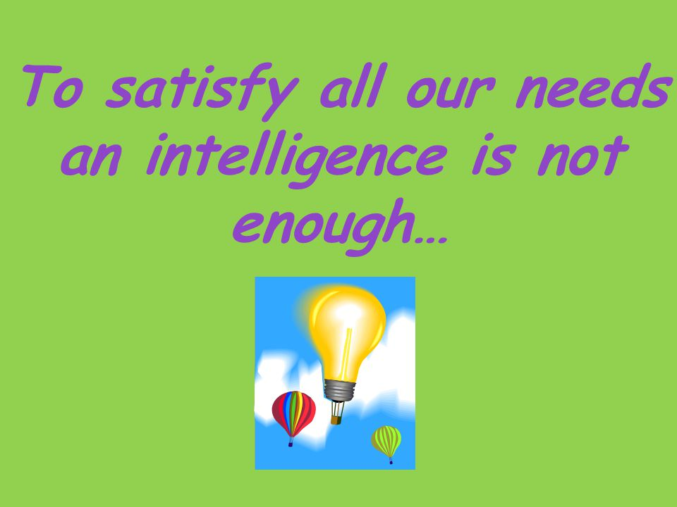 To satisfy all our needs an intelligence is not enough…