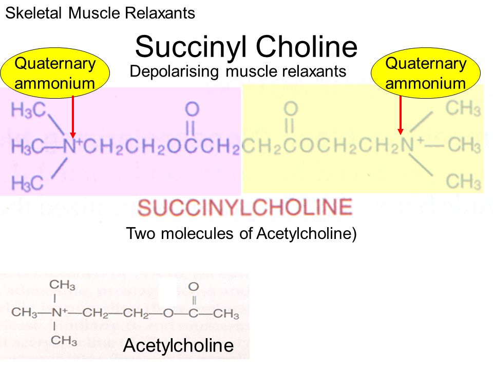 Succinyl Choline Acetylcholine Two molecules of Acetylcholine) Depolarising muscle relaxants Skeletal Muscle Relaxants Quaternary ammonium Quaternary
