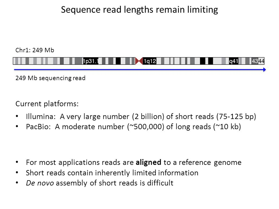 Simplifications Aligners Use Assume the reference is complete The best scoring match is considered location (or locations) of the read in the genome Speed is the priority Difficult to align ends are soft clipped Reads are aligned individually Indels may not be consistent across reads