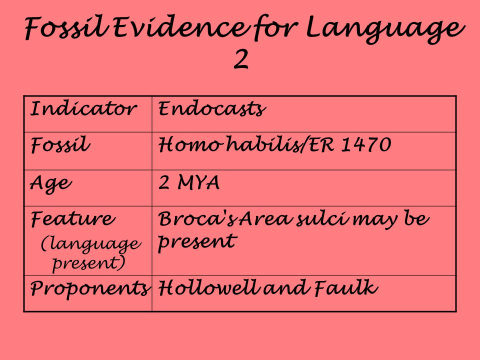 Fossil Evidence for Language 2 IndicatorEndocasts FossilHomo habilis/ER 1470 Age2 MYA Feature (language present) Broca s Area sulci may be present ProponentsHollowell and Faulk