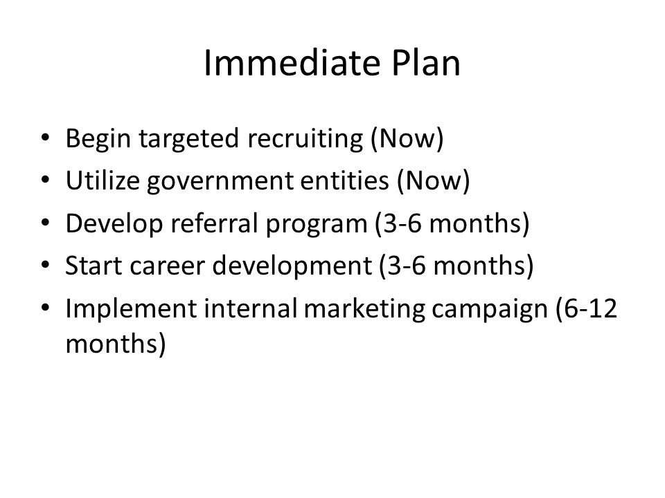 Immediate Plan Begin targeted recruiting (Now) Utilize government entities (Now) Develop referral program (3-6 months) Start career development (3-6 months) Implement internal marketing campaign (6-12 months)