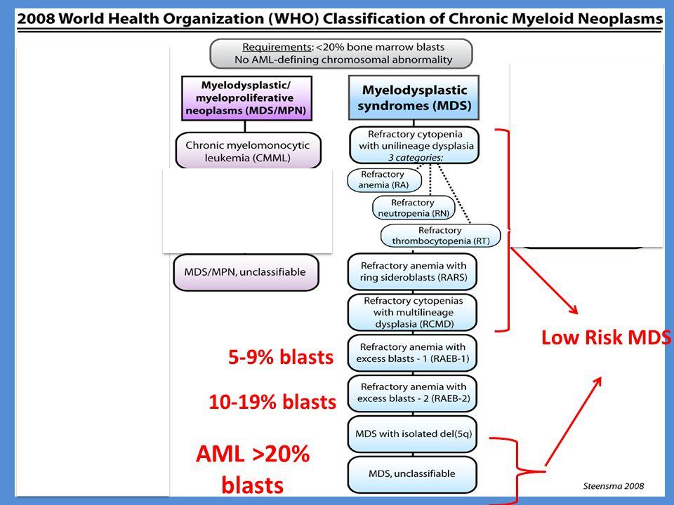 Low Risk MDS 5-9% blasts 10-19% blasts AML >20% blasts