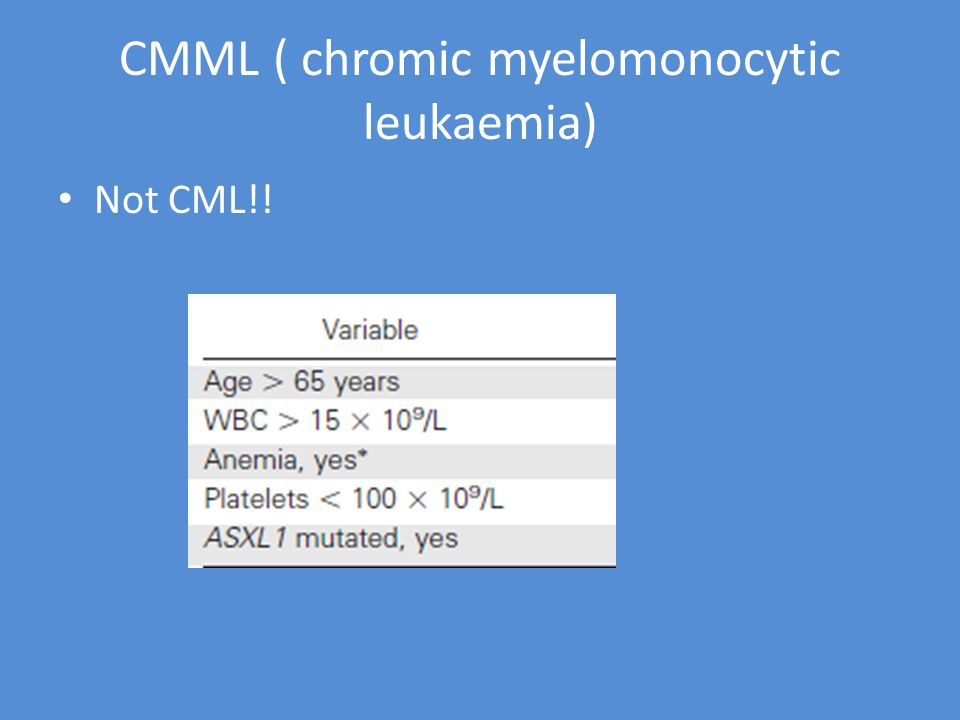 CMML ( chromic myelomonocytic leukaemia) Not CML!!