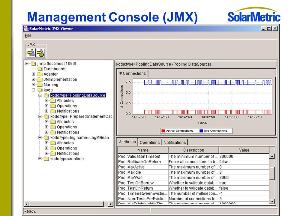 Management Console (JMX)