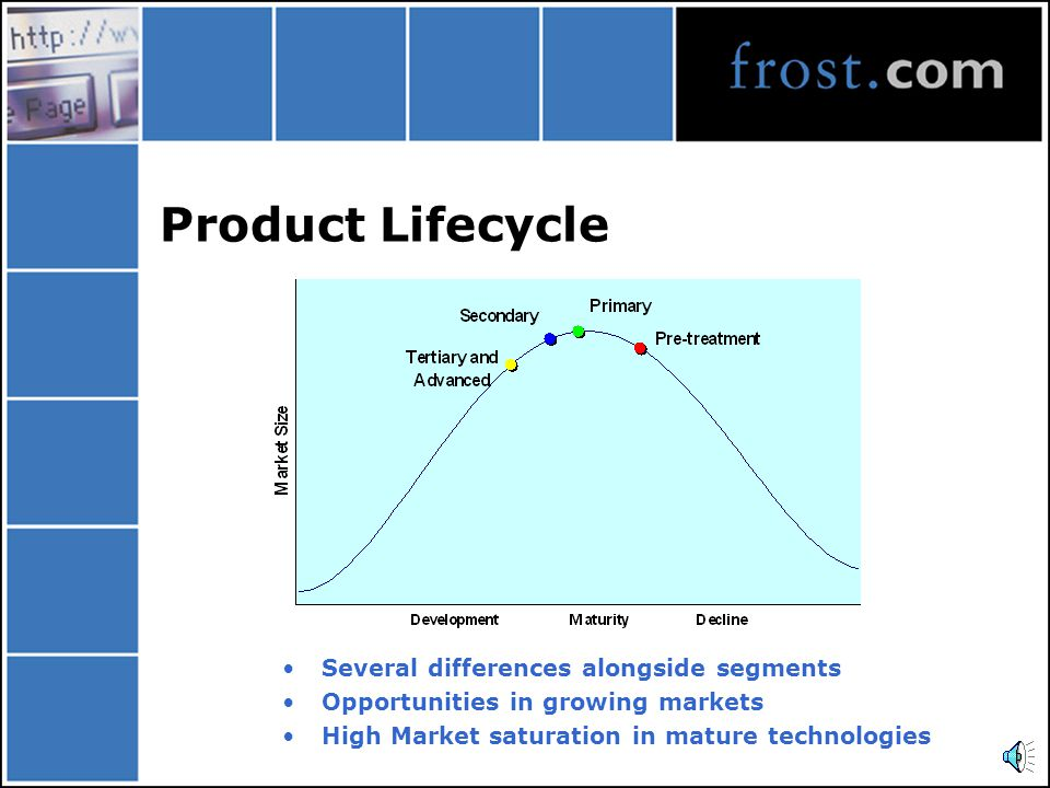 Product Lifecycle Several differences alongside segments Opportunities in growing markets High Market saturation in mature technologies