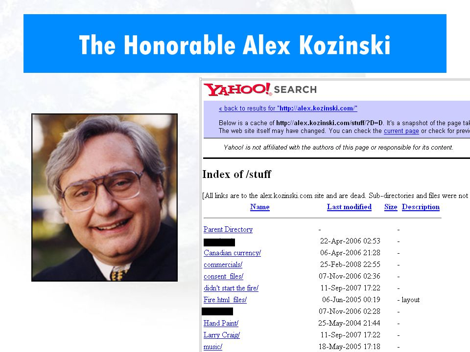 The Honorable Alex Kozinski