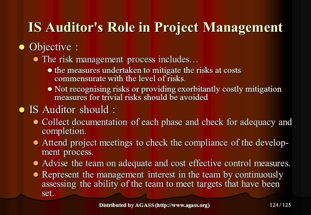124 / 125 IS Auditor's Role in Project Management Objective : Objective : The risk management process includes… The risk management process includes…