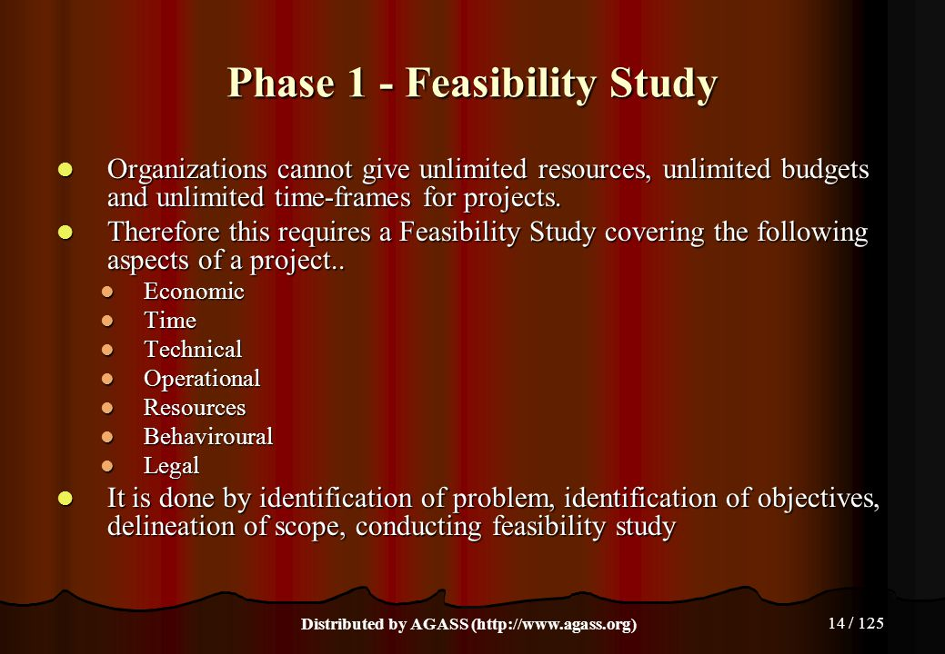 14 / 125 Phase 1 - Feasibility Study Organizations cannot give unlimited resources, unlimited budgets and unlimited time-frames for projects. Organiza