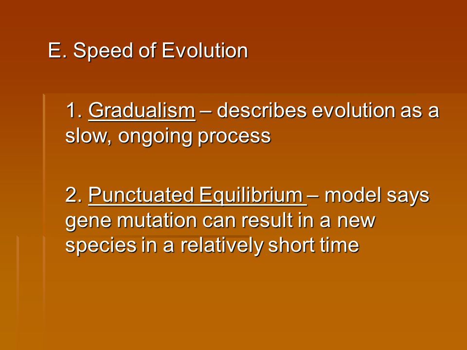 E. Speed of Evolution 1. Gradualism – describes evolution as a slow, ongoing process 2. Punctuated Equilibrium – model says gene mutation can result i