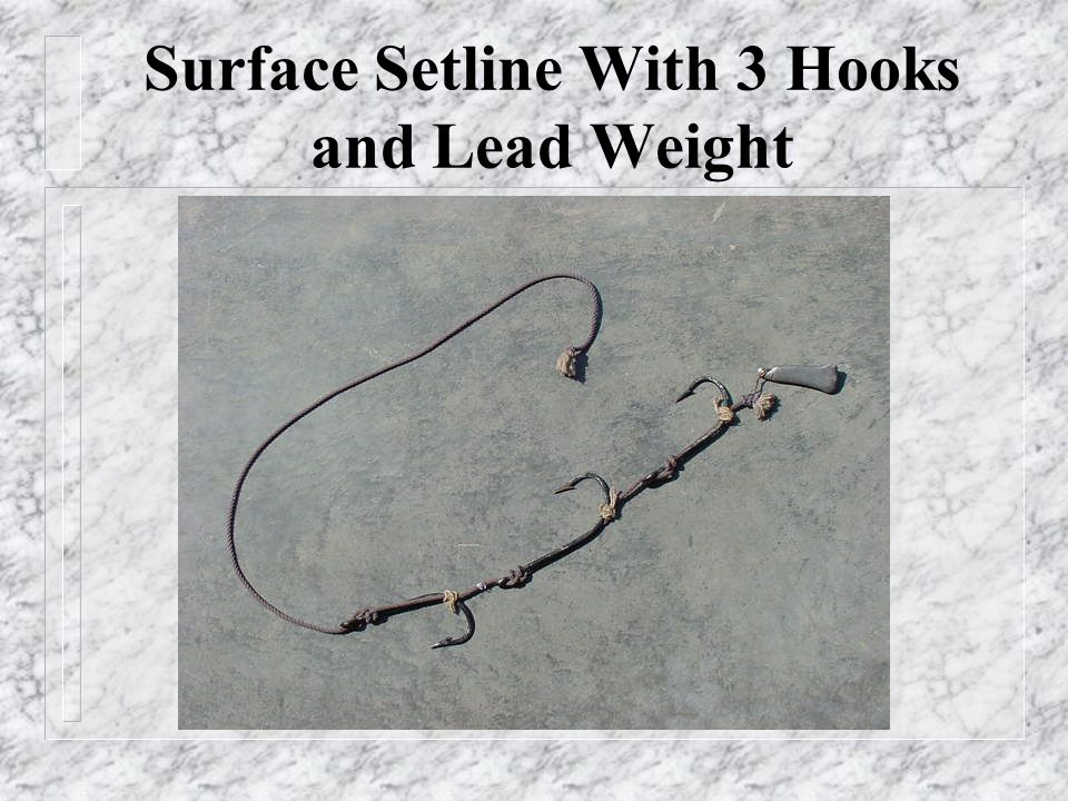 Surface Setline With 3 Hooks and Lead Weight