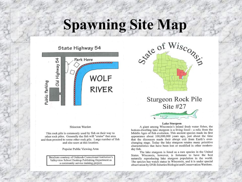 Spawning Site Map