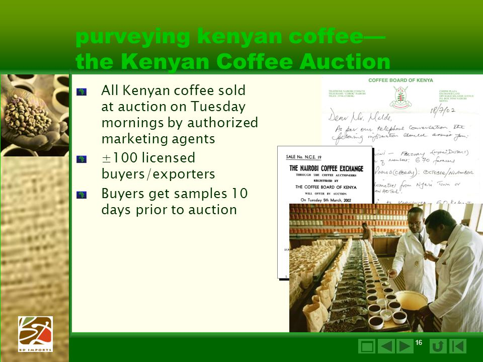 16 purveying kenyan coffee— the Kenyan Coffee Auction All Kenyan coffee sold at auction on Tuesday mornings by authorized marketing agents ±100 licensed buyers/exporters Buyers get samples 10 days prior to auction 