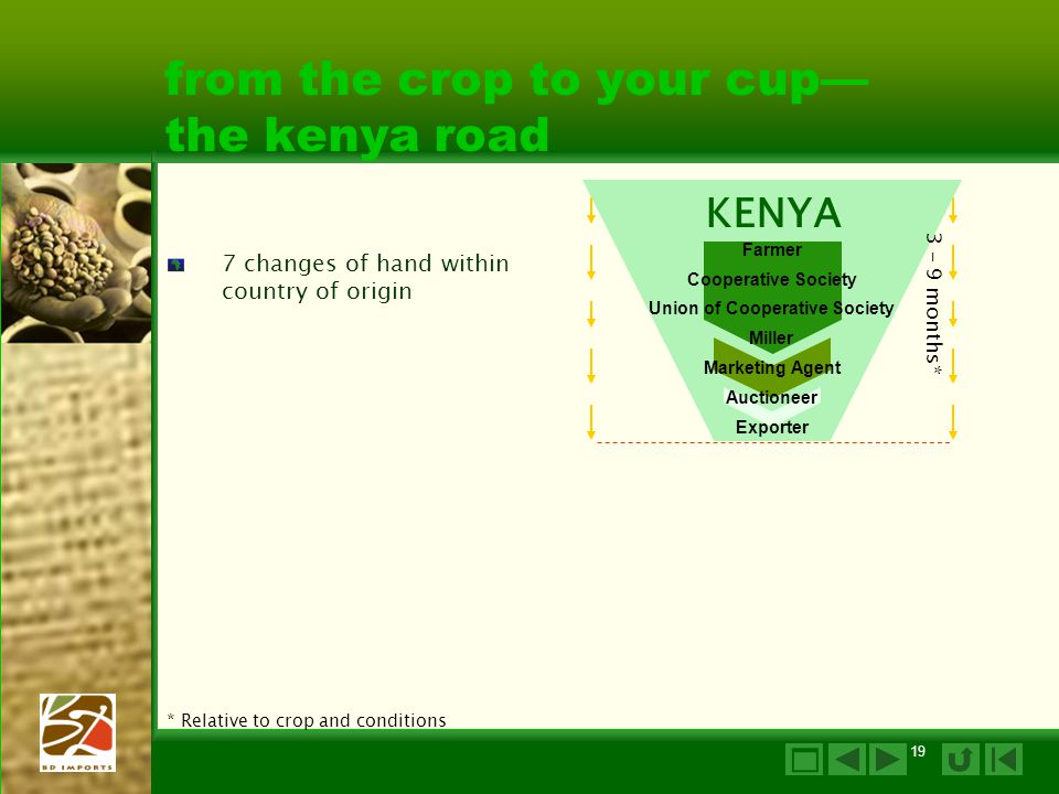 19 from the crop to your cup— the kenya road 7 changes of hand within country of origin * Relative to crop and conditions Farmer Cooperative Society Miller Exporter KENYA 3 – 9 months* Union of Cooperative Society Marketing Agent Auctioneer 
