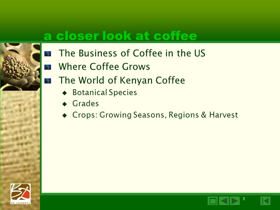 3 a closer look at coffee The Business of Coffee in the US Where Coffee Grows The World of Kenyan Coffee  Botanical Species  Grades  Crops: Growing Seasons, Regions & Harvest 