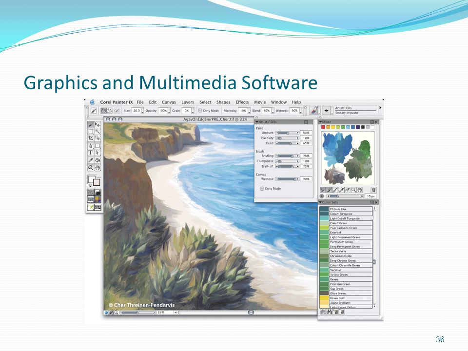 Graphics and Multimedia Software 36