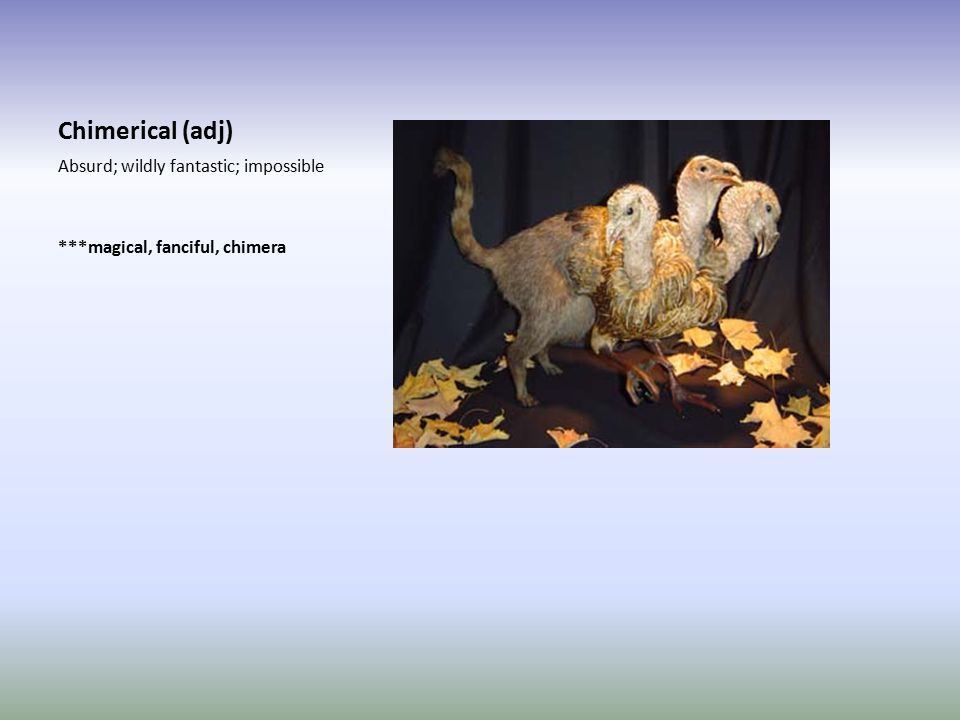 Chimerical (adj) Absurd; wildly fantastic; impossible ***magical, fanciful, chimera