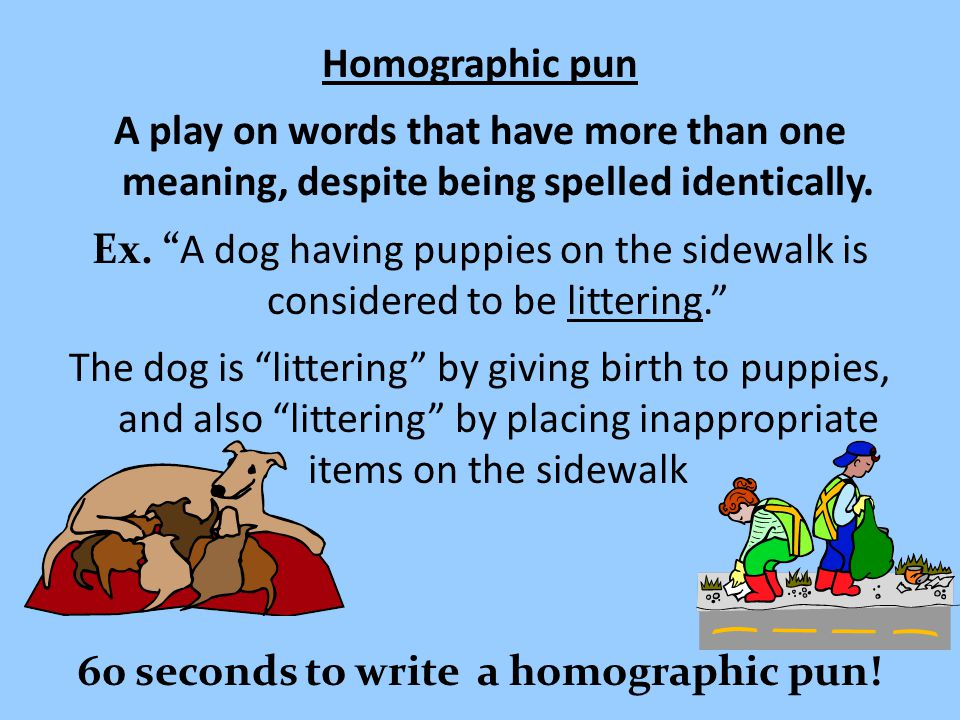 Homographic pun A play on words that have more than one meaning, despite being spelled identically.