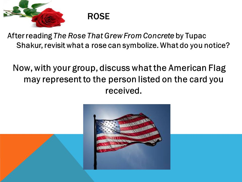 ROSE After reading The Rose That Grew From Concrete by Tupac Shakur, revisit what a rose can symbolize.