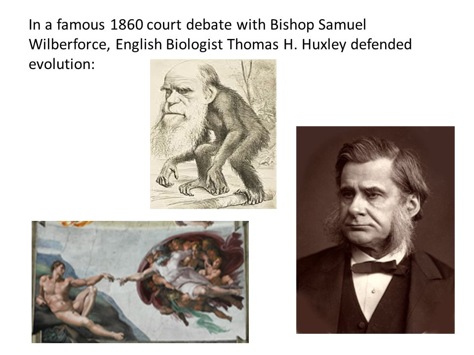 In a famous 1860 court debate with Bishop Samuel Wilberforce, English Biologist Thomas H. Huxley defended evolution: