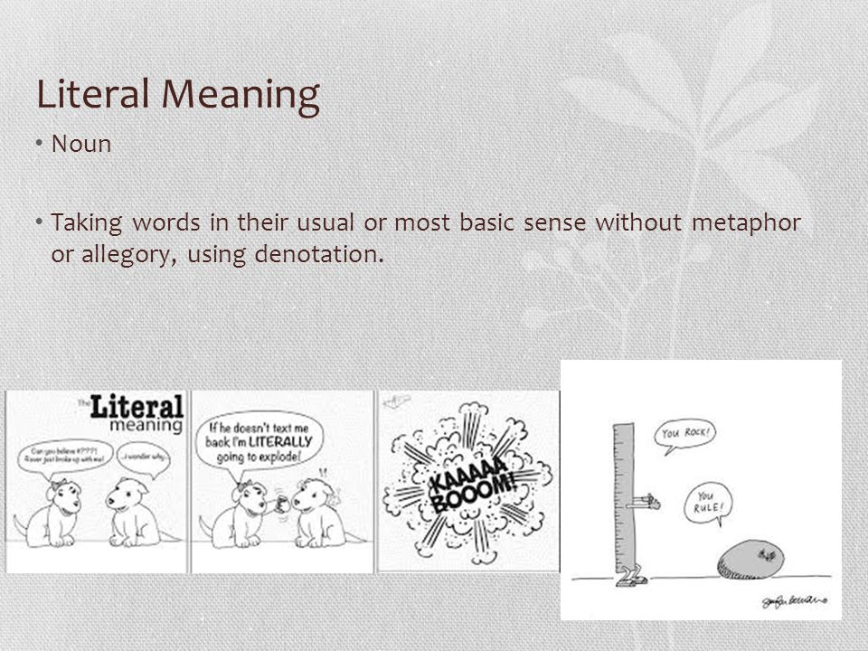 Literal Meaning Noun Taking words in their usual or most basic sense without metaphor or allegory, using denotation.