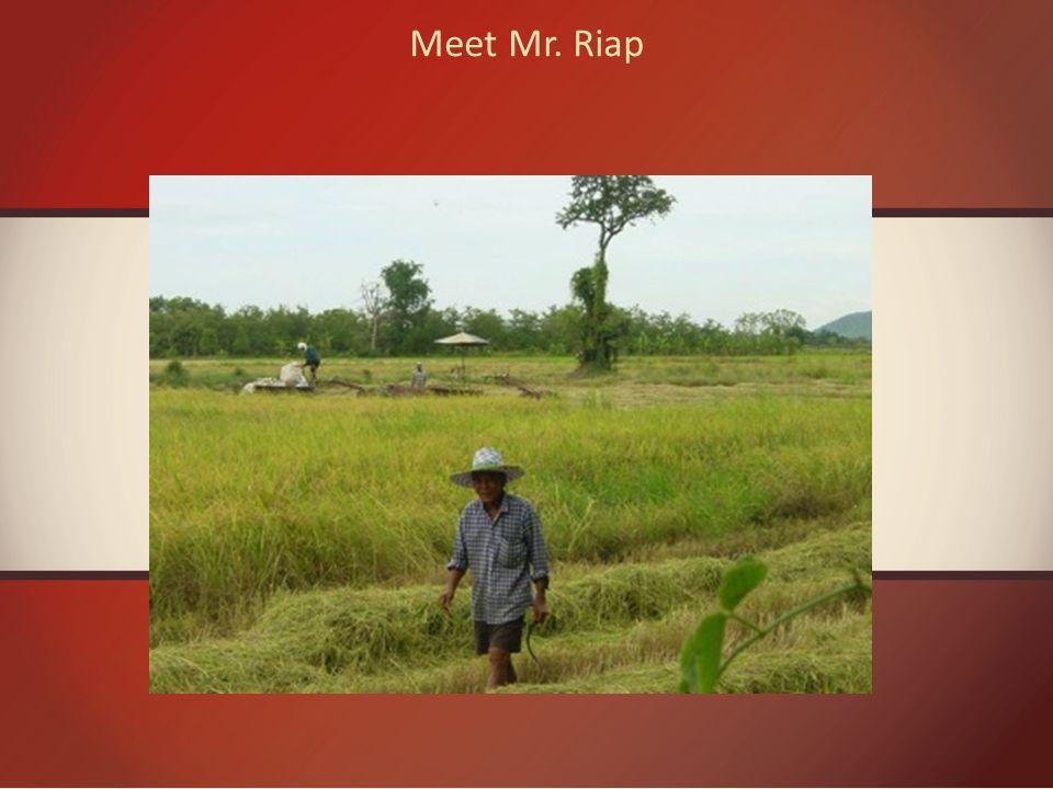 Meet Mr. Riap