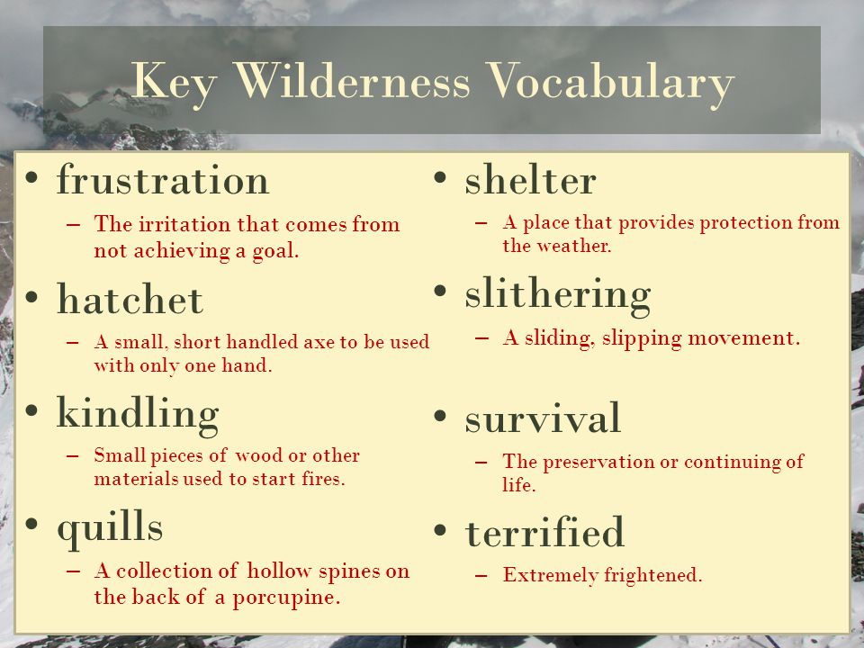 Key Wilderness Vocabulary frustration –T–The irritation that comes from not achieving a goal. hatchet –A–A small, short handled axe to be used with on