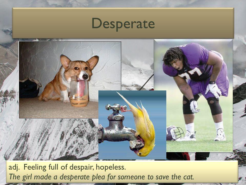 Desperate adj.Feeling full of despair, hopeless.
