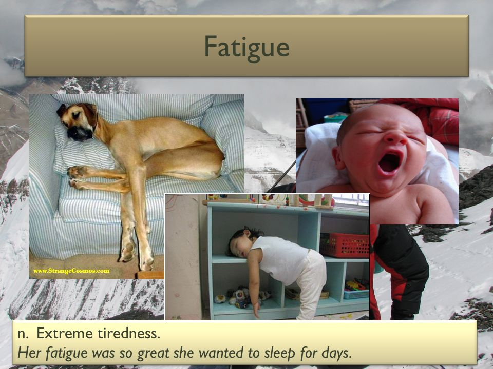 Fatigue n. Extreme tiredness. Her fatigue was so great she wanted to sleep for days. n. Extreme tiredness. Her fatigue was so great she wanted to slee