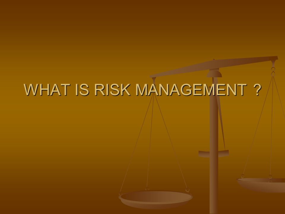WHAT IS RISK MANAGEMENT ?