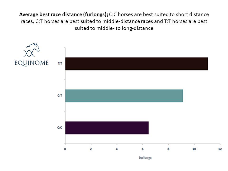 Average best race distance (furlongs); C:C horses are best suited to short distance races, C:T horses are best suited to middle-distance races and T:T horses are best suited to middle- to long-distance