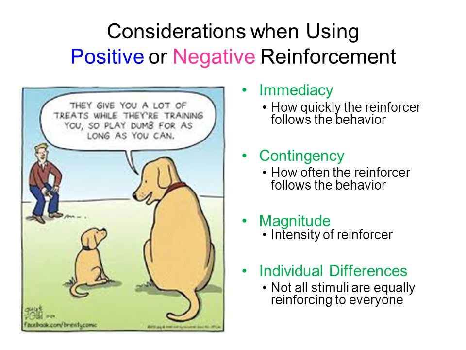 Considerations when Using Positive or Negative Reinforcement Immediacy How quickly the reinforcer follows the behavior Contingency How often the reinf