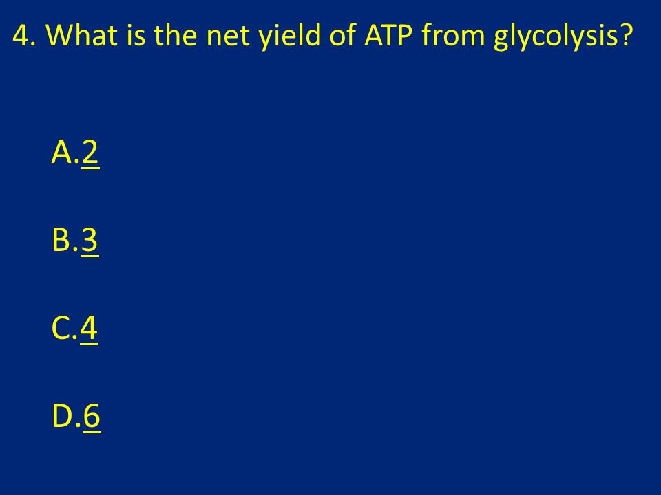 4. What is the net yield of ATP from glycolysis A.22 B.33 C.44 D.66