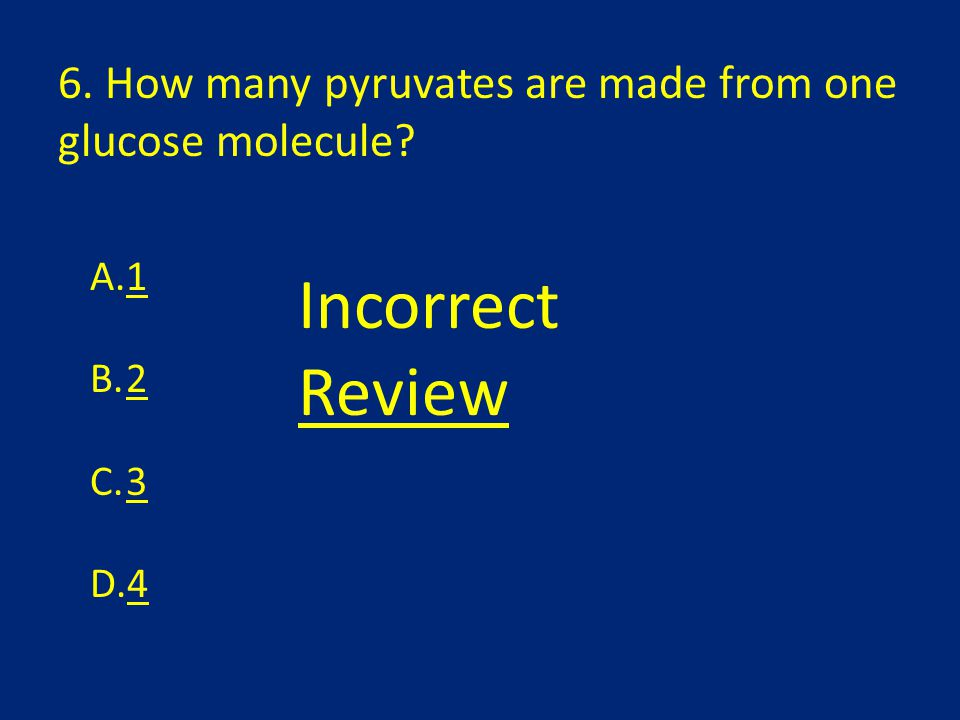 6. How many pyruvates are made from one glucose molecule? A.1 B.2 C.3 D.4 Incorrect Review