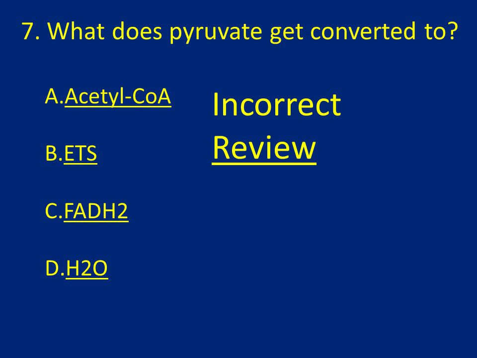 7. What does pyruvate get converted to A.Acetyl-CoA B.ETS C.FADH2 D.H2O Incorrect Review