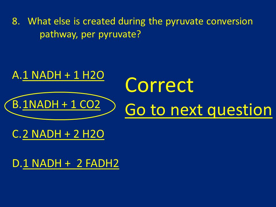8.What else is created during the pyruvate conversion pathway, per pyruvate.