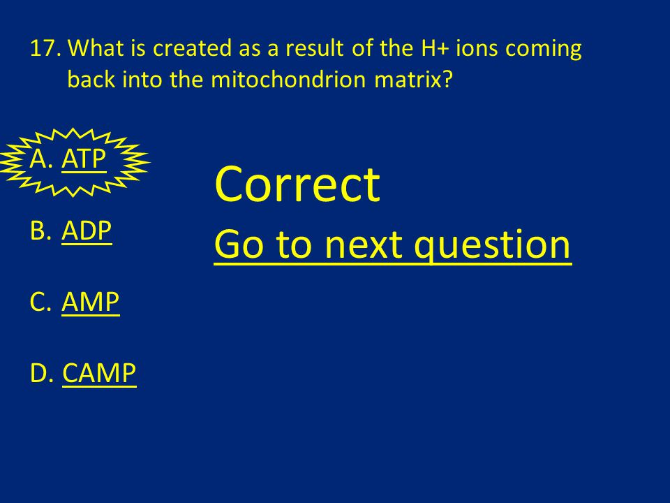 17.What is created as a result of the H+ ions coming back into the mitochondrion matrix.